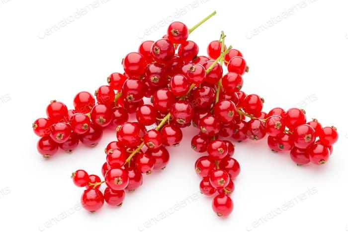 Rote Johannisbeere Nahaufnahme isoliert auf weiß.