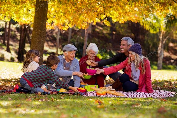 Family having breakfast at park