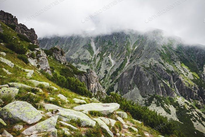The mist getting down on the Tatras, Slovakia.