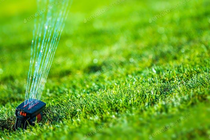 Garden Grass Sprinkler