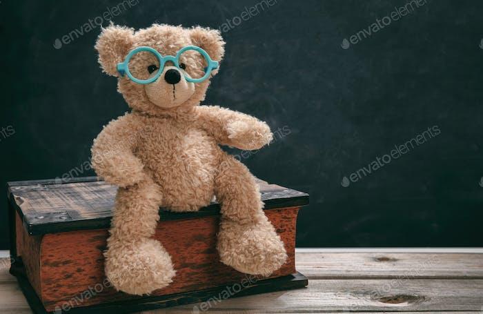 Niedlicher Teddy trägt Brille gegen schwarze Tafel