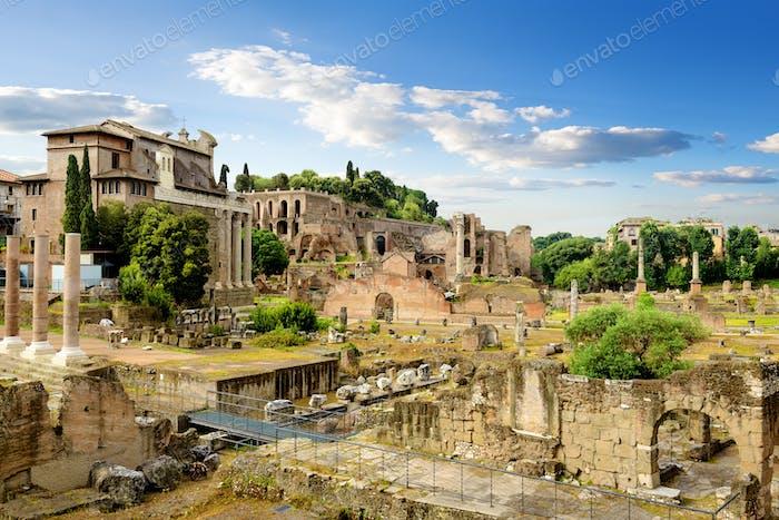Ruinen von Rom