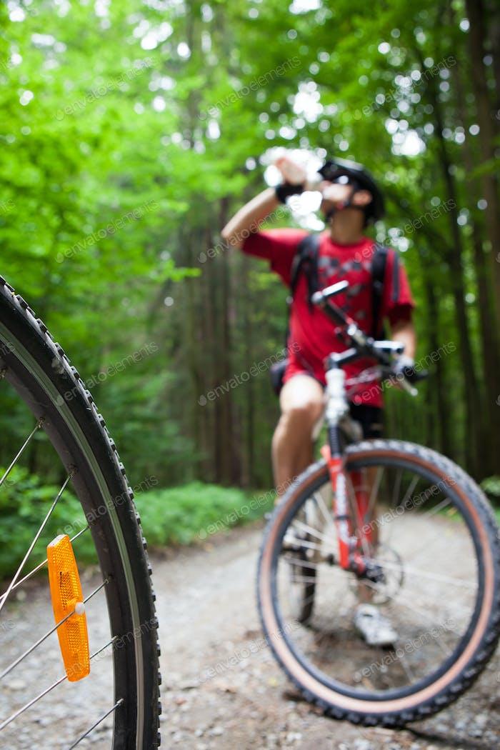 Mountainbiken im Wald - Biker auf einem Waldradweg (s