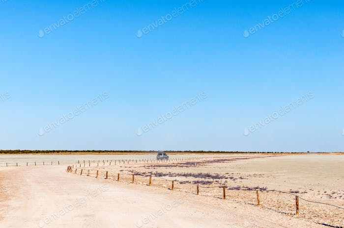 View from the viewpoint on the Etosha Pan
