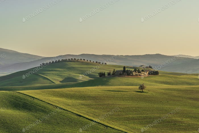 Scenic Landscape & Farm of Tuscany at sunset