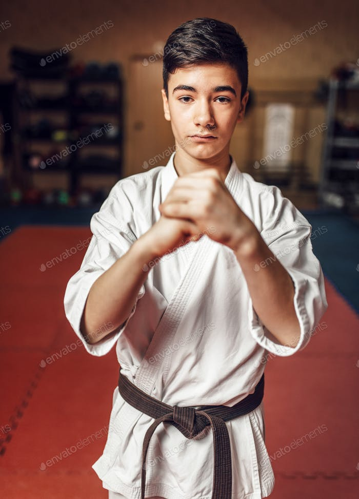 Martial arts, young fighter making respect sign