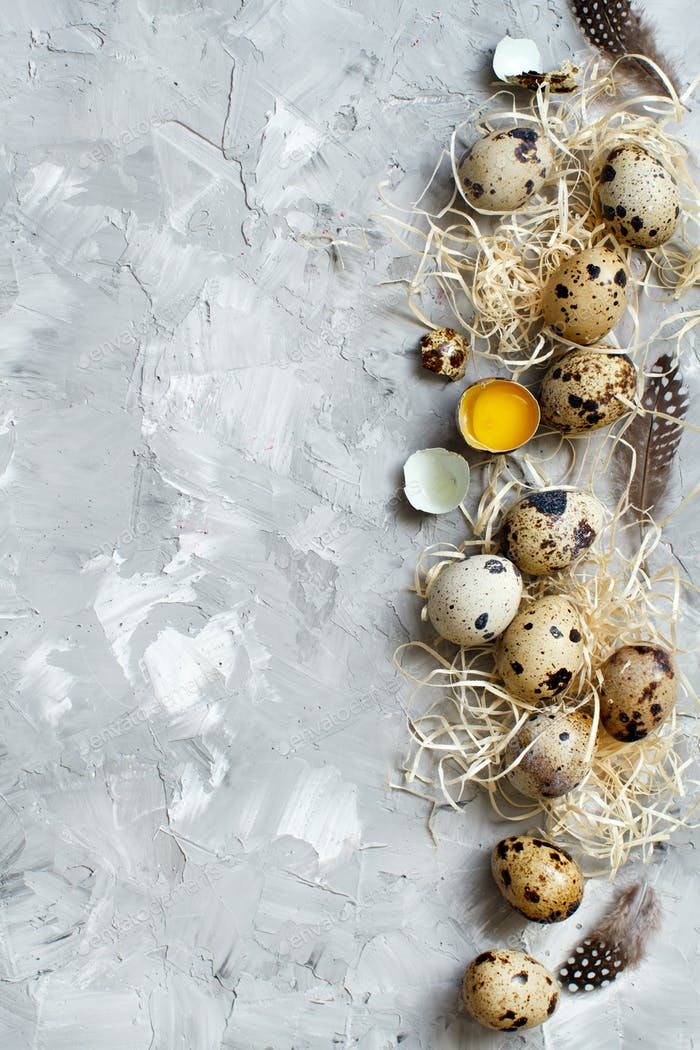 Quail eggs top view