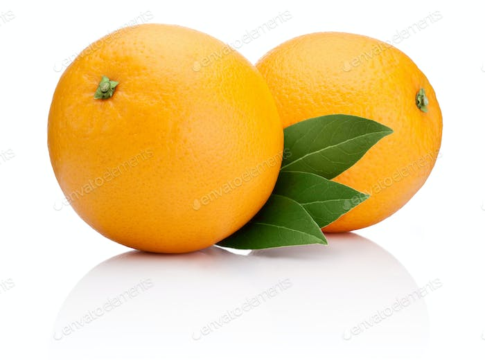 Two Ripe Oranges fruit with green leaves isolated on white backg