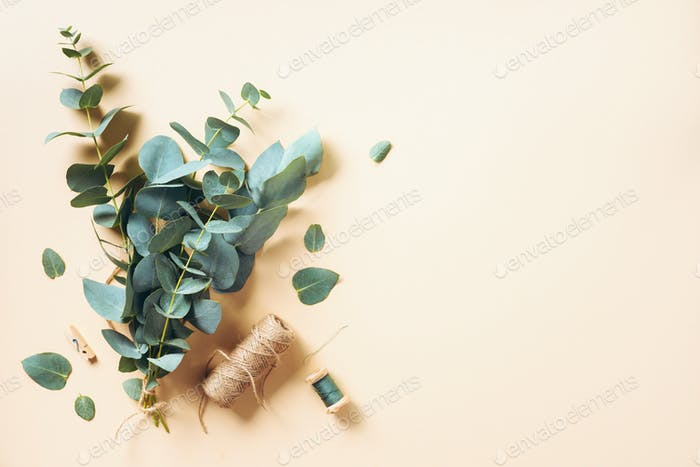Eucalyptus bouquet creating with baby blue eucalyptus branches over pastel background. Florist work