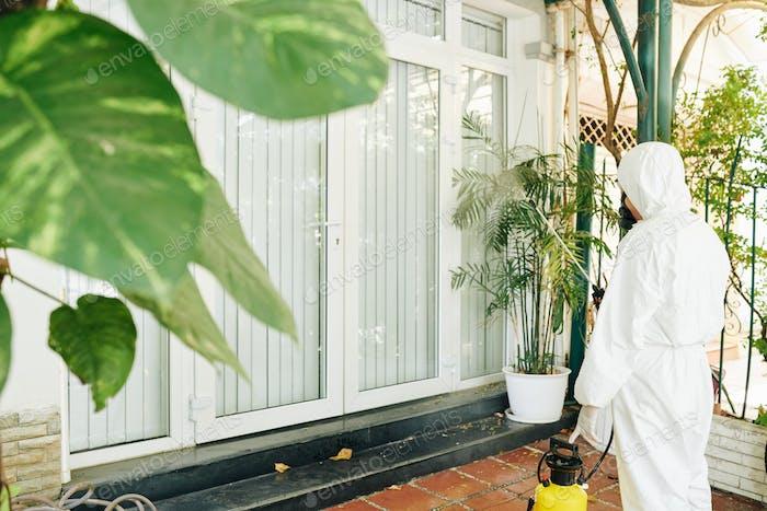 Disinfecting entrance doors