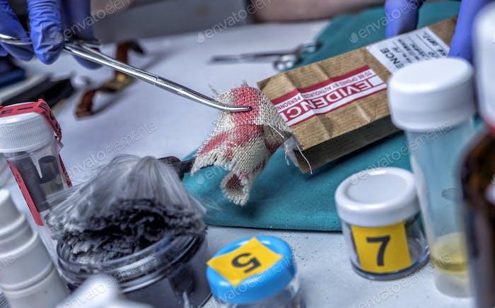Polizeispezialist untersucht Stück Stoff mit Blut gefärbt