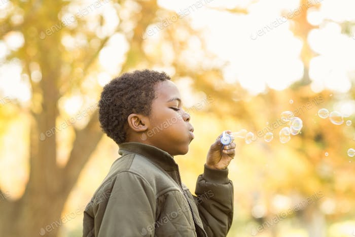 Little boy doing some bubbles on an autumns day