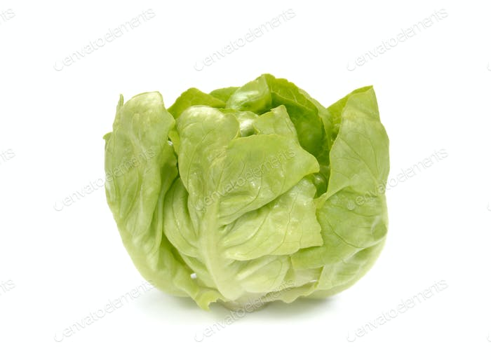 Fresh lettuce salad,Fresh vegetable salad on white background.