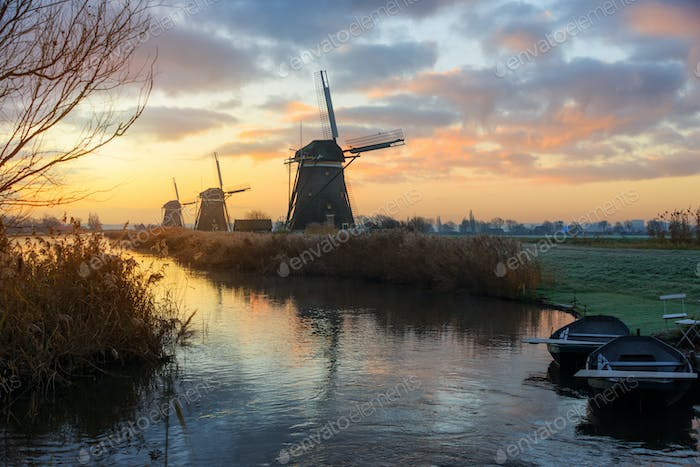 Windmills at sunrise in a rural dutch landscape