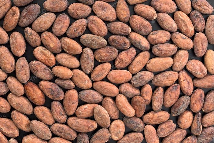 Gruppe von Kakaobohnen
