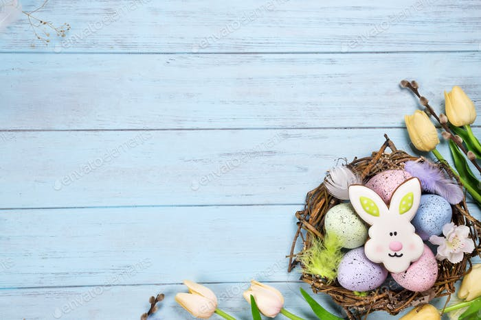 Colorful easter egg end easter cookies as rabbit in the nest with tulips on wood background