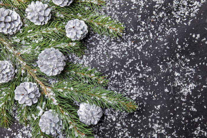 Christmas background with fir and silver cones