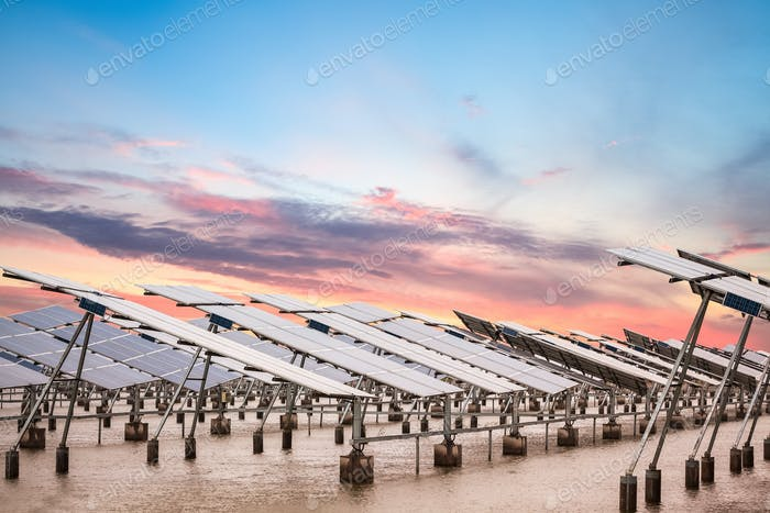 solar power farm at dusk