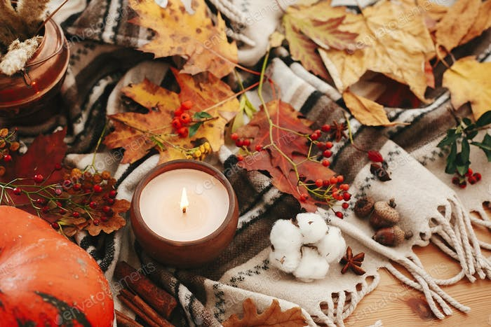 Pumpkin and candle with berries, fall leaves. Happy Thanksgiving. Cozy inspirational image