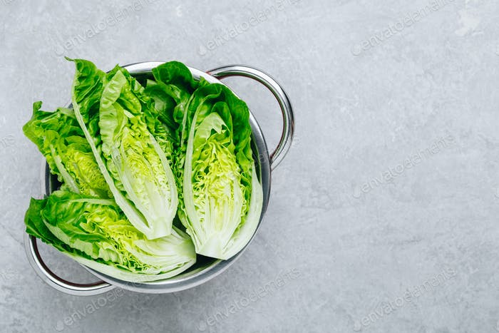 Fresh Green Romaine Lettuce for Caesar Salad on gray stone background.