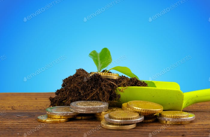 Coins stack of money and growing plant, financial concept