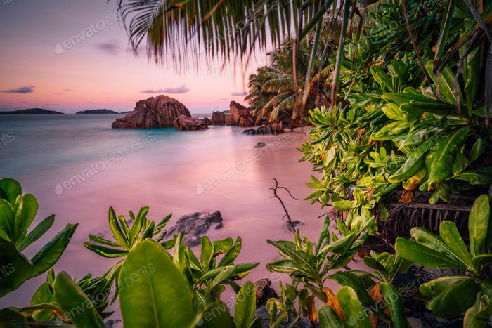 Beautiful romantic sunset sundown red sky on Seychelles paradise island. Granite rocks, palm trees