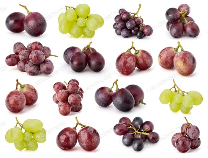 Grape berries collection isolated on white background cutout. Set of different grape branches.