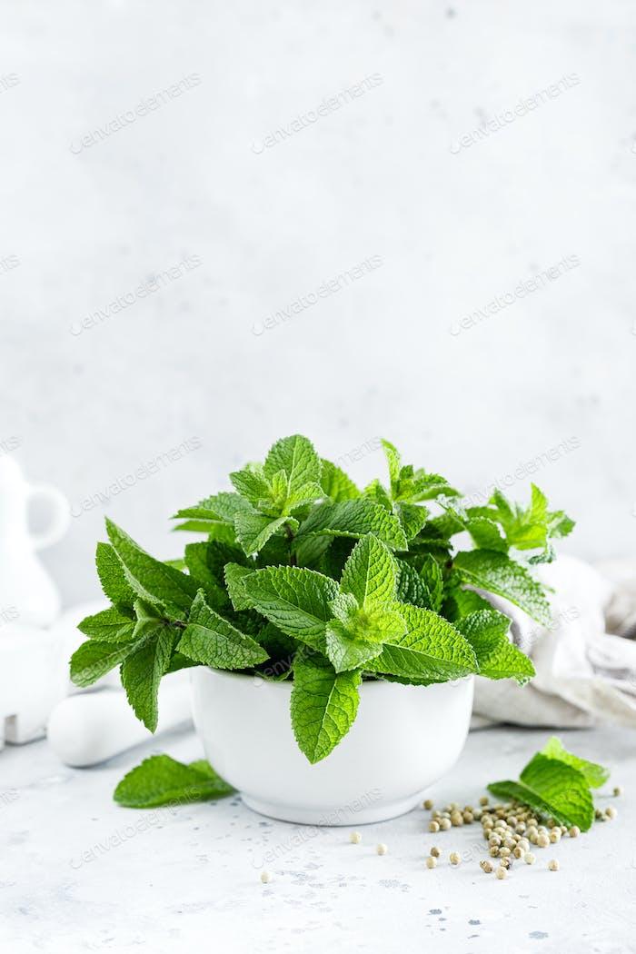Minze Blätter im Bündel auf weißen Küchentisch Nahaufnahme