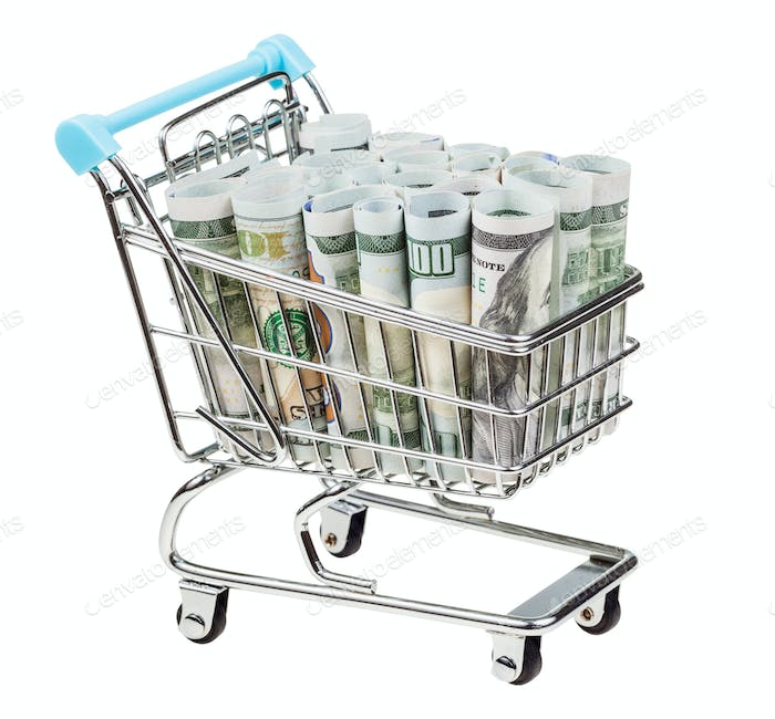 shopping-cart with dollar banknotes isolated