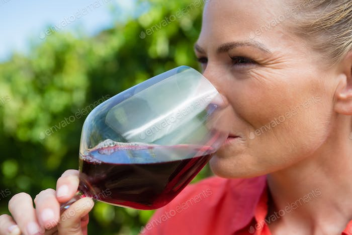 Close-up of female vintner tasting glass of wine