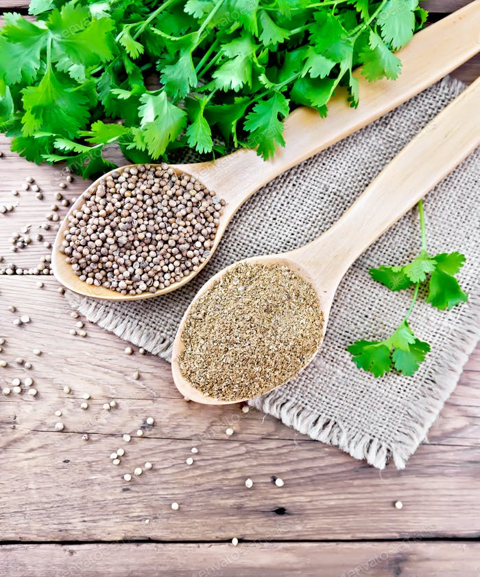 Coriander ground and seeds in two spoons on old board top