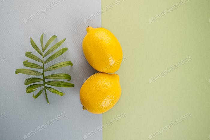 Two large ripe yellow lemon and green leaf on a blue-green paste