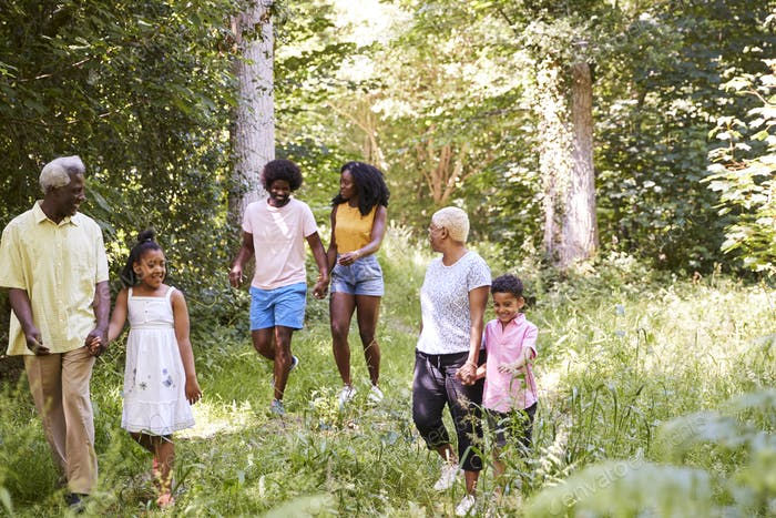 Multi generation black family walking together in a forest