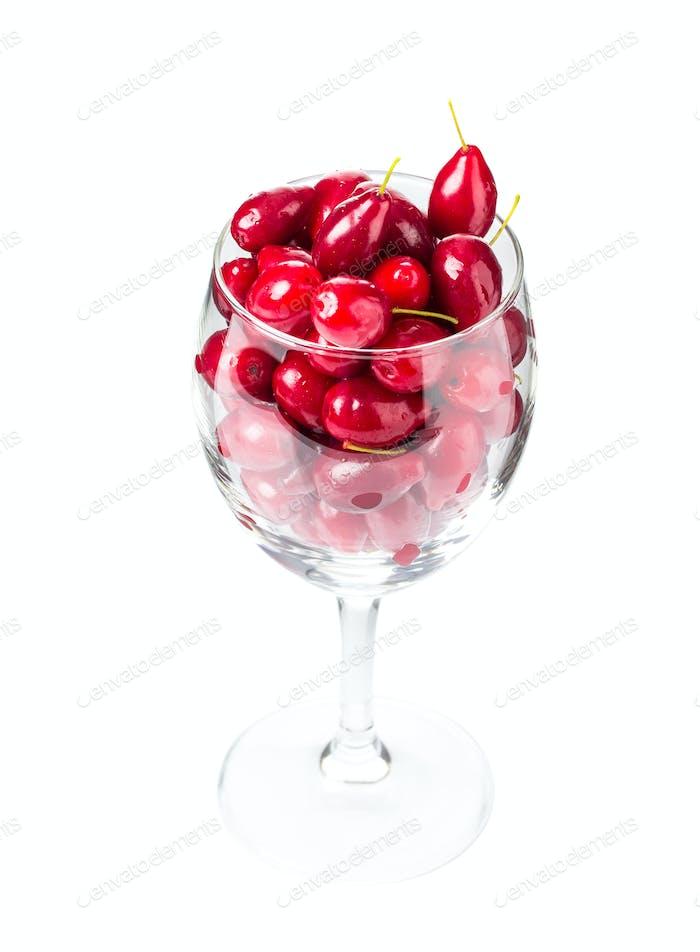 Riped dogwood berries in wine glass.