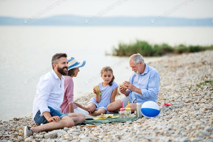 Multigeneration family on a holiday by the lake, having picnic