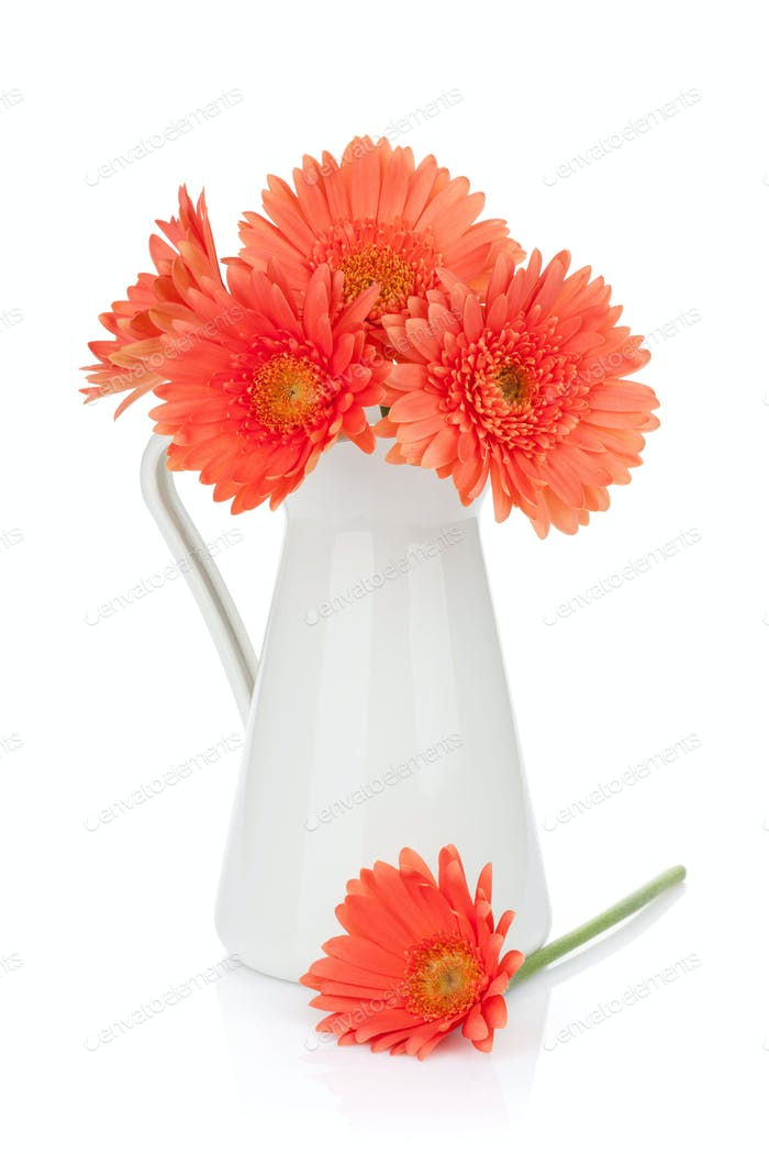 Orange gerbera flowers in pitcher