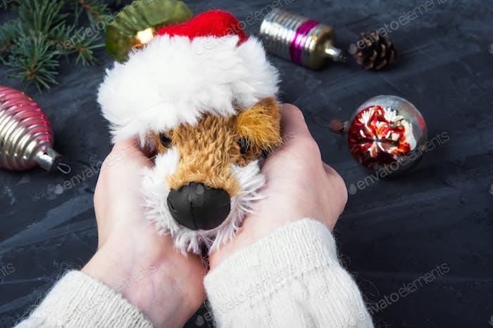 holiday symbolic Christmas dog