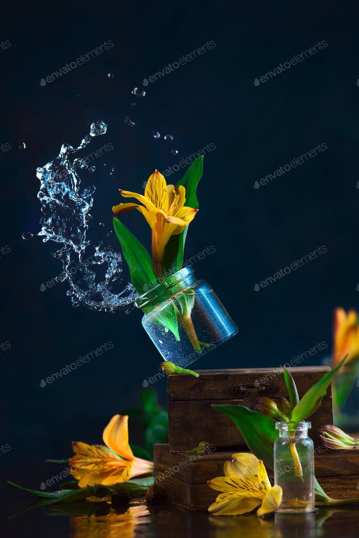 Spring wind knocking off a glass jar with a yellow alstroemeria flower. Water splash high-speed
