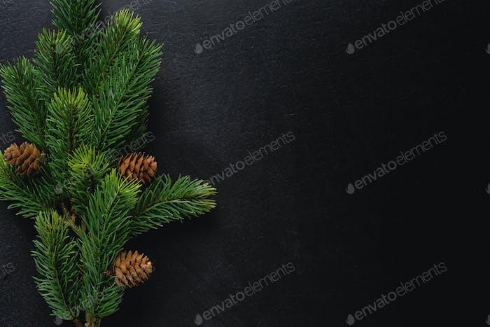 Christmas deco with fir on dark