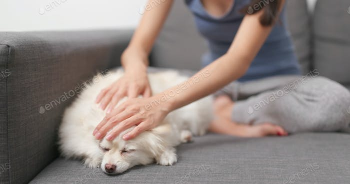 Woman touching on her dog and sitting on sofa