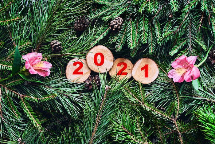 2021 inscription on sections on pine and spruce branches with cones and flowers.