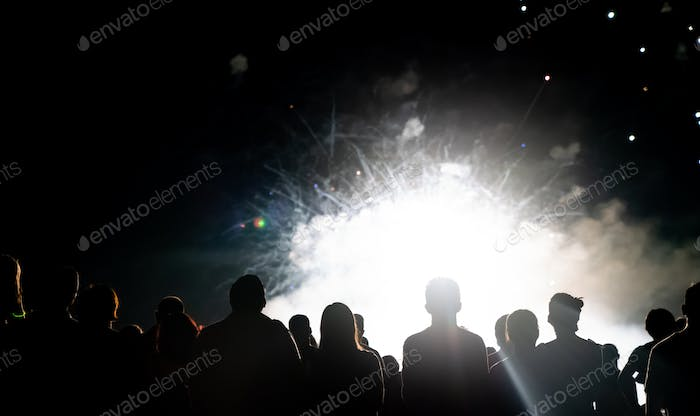Thumbnail for Crowd watching fireworks and celebrating new year