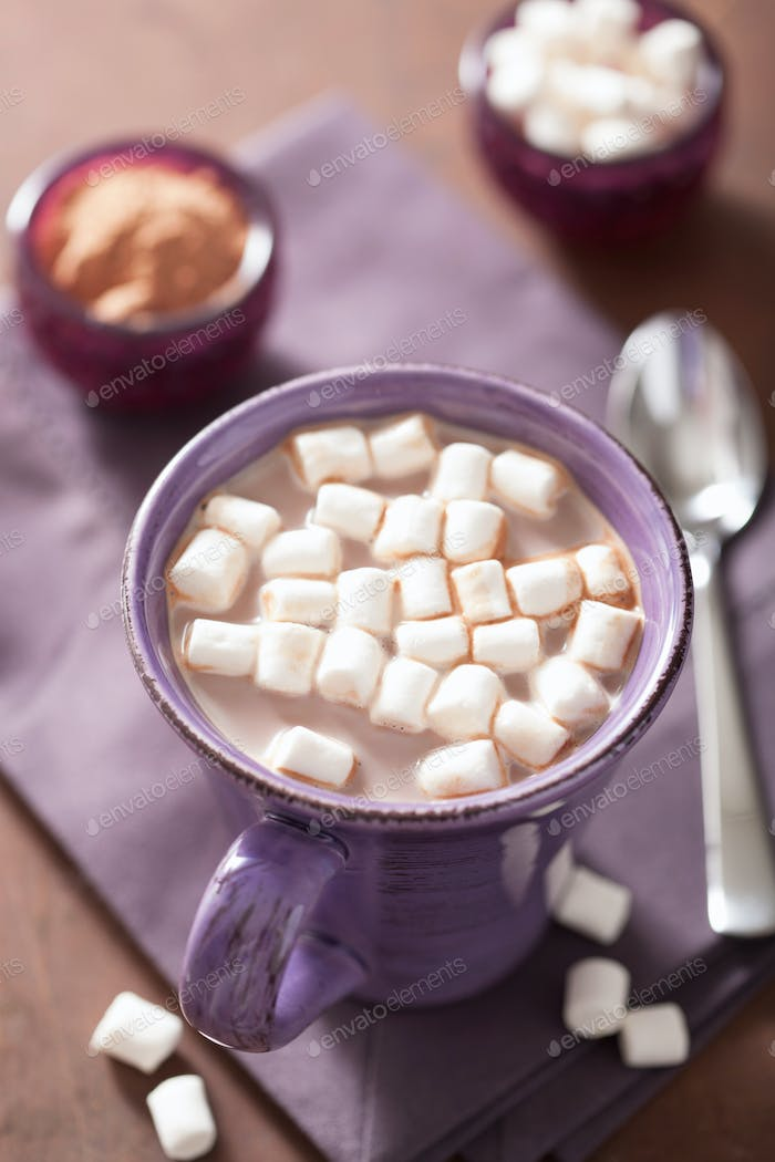 hot chocolate with mini marshmallows in purple mug