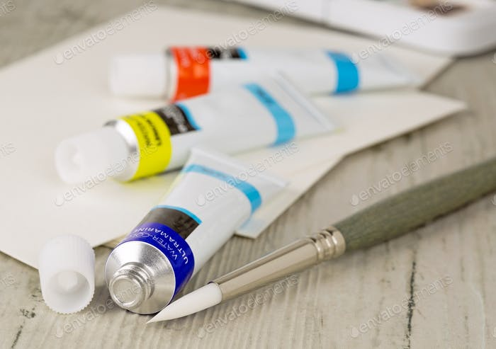 Paint Brush and Paints
