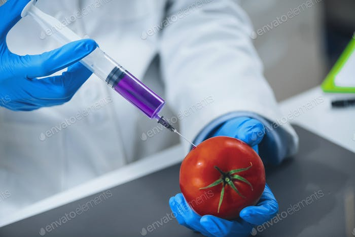 Genetically modified food.