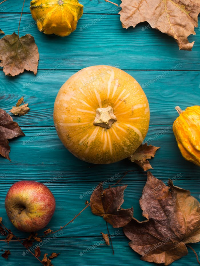 Green autumn background with pumpkin, leaves