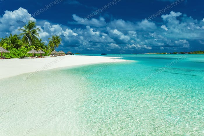 Tropical coastline with palm trees and beautiful sand. Exotic be