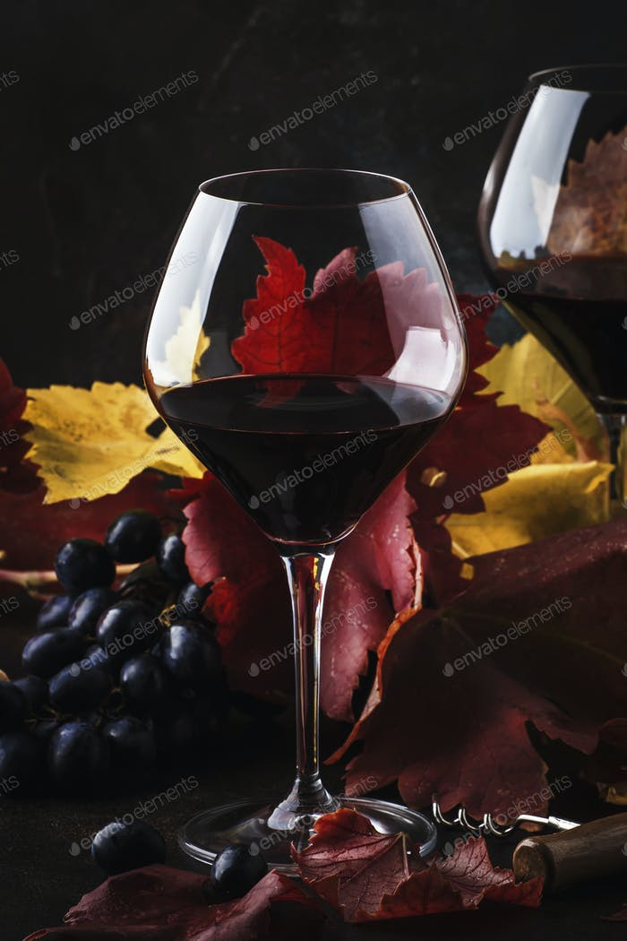 Dry Red Wine in big wine glass
