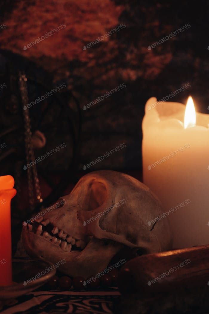 Altar with skull, statue and candles