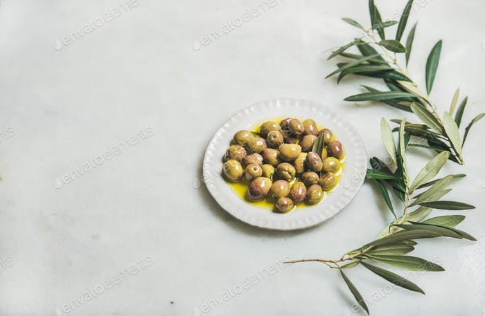 Pickled green Mediterranean olives in virgin oil and olive-tree branch